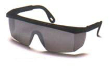 Picture of Expo Safety Glasses