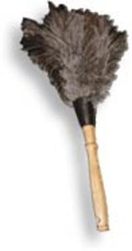 Picture of Feather Duster